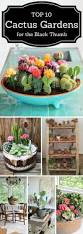 garden rockery ideas best 25 outdoor cactus garden ideas on pinterest cactus garden