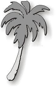 dessin de palmier photos libres de droits image 122378