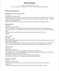 Car Sales Consultant Job Description Resume by Sales Resume Example Sales Resume For Sales Executive Resume