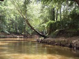 Big Cypress Bayou, Jefferson,