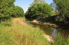 Río Cueza