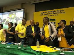 ANC will force DA out of office in PE  says Lungisa   The Citizen The Citizen President Jacob Zuma put in an appearance the the ANC     s Nelson Mandela Bay regional elective conference