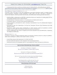 Financial Resume Sample by The Top 4 Executive Resume Examples Written By A Professional