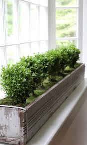 717 best window boxes and planters images on pinterest window