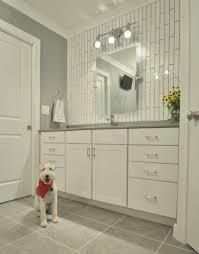 Bathroom Tile And Paint Ideas Bathroom Bathroom Mesmerizing Modern Master Bathroom Tile Ideas