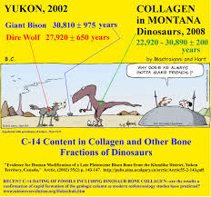CARBON DATING OF FOSSILS cartoon