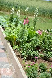 companion vegetable garden layout a walk in the vegetable garden stonegable