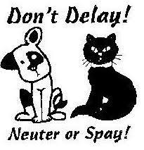 SNIP (Spay/Neuter Program)
