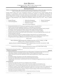 Example Resume  Nice Business Manager Resume Samples With Career History And Personal Summary For Business