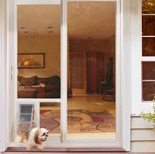 pet doors for glass doors dog doors and cat doors