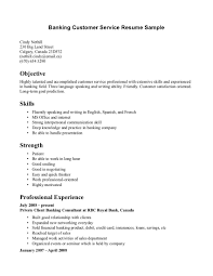 Qualifications Summary Resume Example by Summary Of Qualifications Customer Service Resume Free Resume