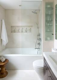 Interior Design Bathroom Ideas by Horizontal Wall Niche Also Glass Shelves Design Feat Modern Small