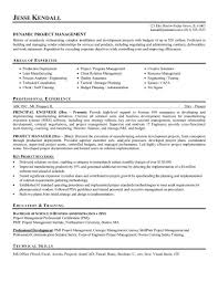It Example Resume by Career Objective For Project Manager Resume Resume For Your Job