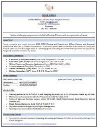 Engineer CV examples Civil  Construction  Mechanical Engineer CV CV Service org     Resume Examples Free With Personal Profile Skills In Applications And Langugae Or Education