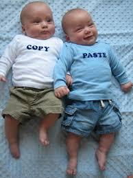 Protect Copy-Paste