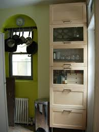 Kitchen Pantry Furniture Hmm Idea For Shallow Pantry In Kitchen Ikea Adel Kitchens