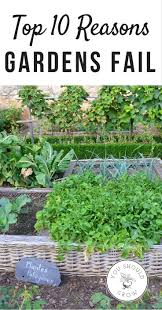 Vertical Garden Vegetables by 5827 Best Vegetable Garden Inspiration U0026 Tips Images On
