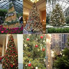 nyc style and a little cannoli 10 best christmas trees in new