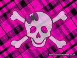 Wallpapers Backgrounds - girly wallpapers (girly wallpapers pink skull picturesdepot 1024x768)
