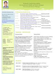 English Cv Writing  cv resume curriculum vitae english  cv resume     happytom co