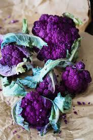 Vegetables by Best 25 Purple Vegetables Ideas On Pinterest Purple Food