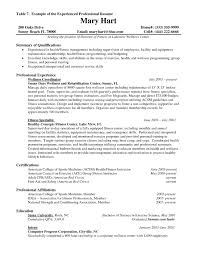 Resume Headline Examples by Resume Headline Examples For Experienced Resume For Your Job