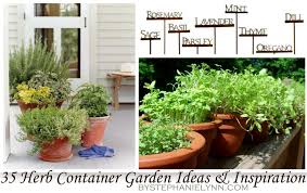 35 herb container gardens pots u0026 planters saturday inspiration