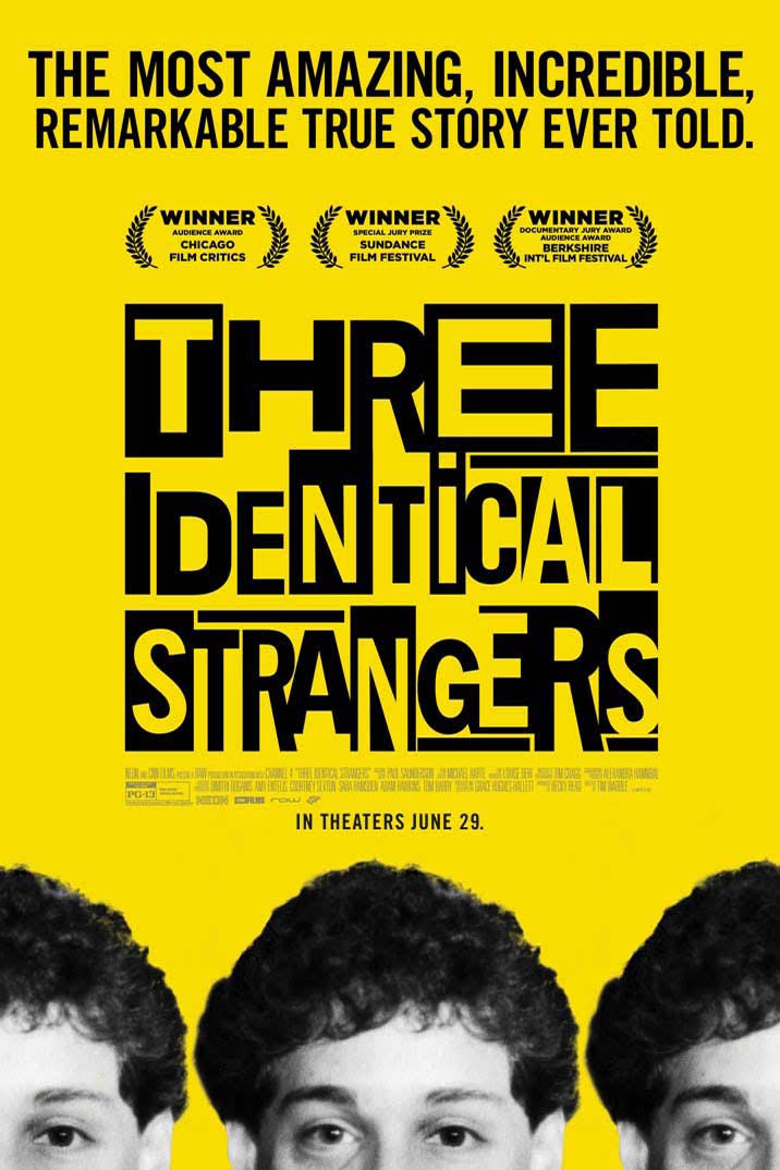 Image result for three identical strangers