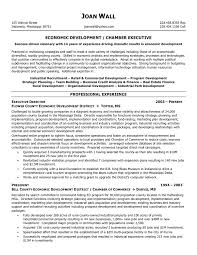 resume examples for project managers resume executive summary sample sample resume and free resume resume executive summary sample resume non profit resume samples resume format 2017