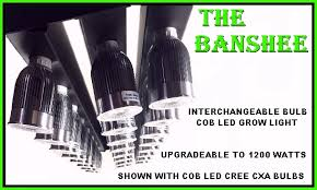 best led grow light spectrum