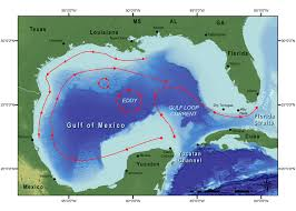 Map Of Western Caribbean by Natural Setting Of Flower Garden Banks National Marine Sanctuary