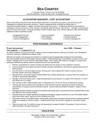 Best Photos of Strong Resume Summary Statements   Good Resume       sample summary