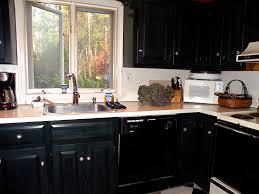 Black Kitchen Designs Photos Amazing Black Kitchen Cabinets Ideas About House Decor Concept