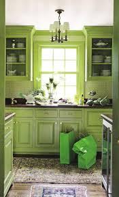 Kitchen Furniture Design Best 25 Lime Green Kitchen Ideas On Pinterest Lime Green Paints