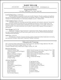 Write Reflective Essay Gibbs Reflective Essay Example Nursing     Brefash Unique Nursing Resumes Chicago Resume Writing Services Resume Writing Tips For Nurses Resume Writing For Nursing