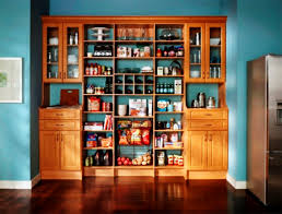 Kitchen Pantry Shelving Ideas by Pantry Shelving Perfect Home Design