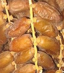 Deglet Nour et autres dattes