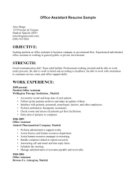 Skills Focused Resume Example Of Experience Focused CV CV Templat
