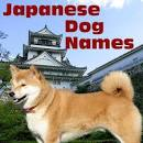 Japanese Dog Names - names for dogs from Japan and from Japanese ... dog-paw-print.com