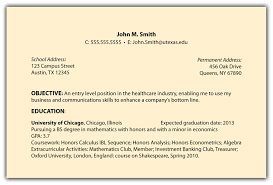 Example Of Resume Objectives by Resume Objective Section Examples