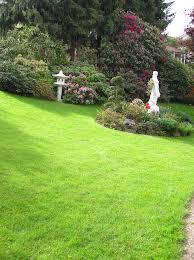 gestaltungstipps für japanische gärten mein schöner garten