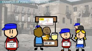 perfect competition definition characteristics u0026 examples