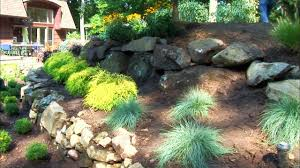 Small Rock Garden Pictures by Rock Landscaping Ideas Diy