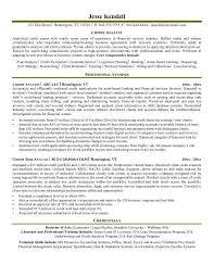 Distressed debt analyst resume Dynu Due Diligence Analyst Resume Example Sample Business Systems Analyst