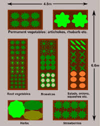 beautiful raised bed vegetable garden layout flowers as companion