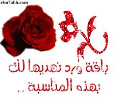 اجمل تهنئه للحبيبه حكايا الورد الغاليه images?q=tbn:ANd9GcS