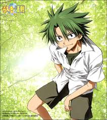 The Law of Ueki Sub Español