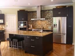 Zebra Wood Kitchen Cabinets Kitchen Fancy Image Of L Shape Kitchen Design And Decoration