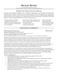 Executive Summary Resume Example Template How To Write A Good Summary For A Resume Free Resume Example And