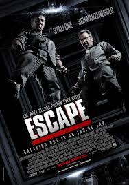 Plan de escape (2013) [Latino]